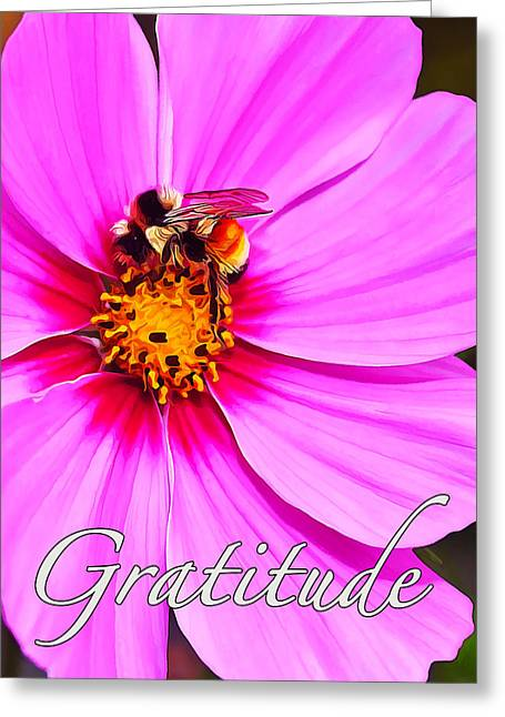 Fuzzy Digital Greeting Cards - Bee on Pink - Gratitude Greeting Card by Bill Caldwell -        ABeautifulSky Photography