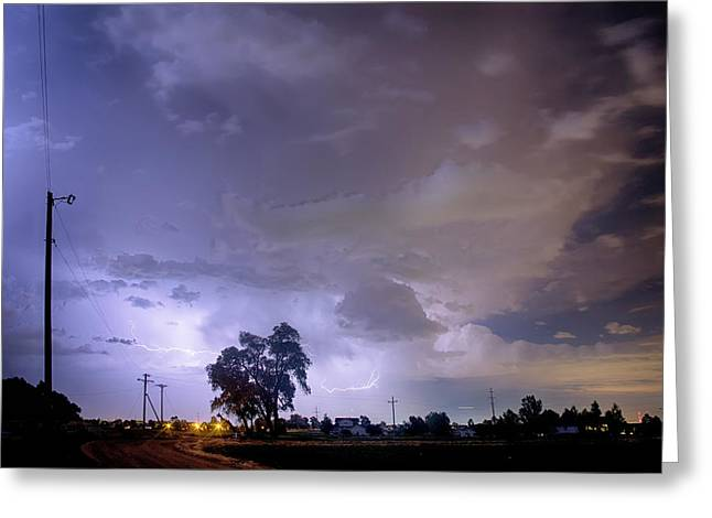 Storm Prints Photographs Greeting Cards - Behind The Tree Greeting Card by James BO  Insogna