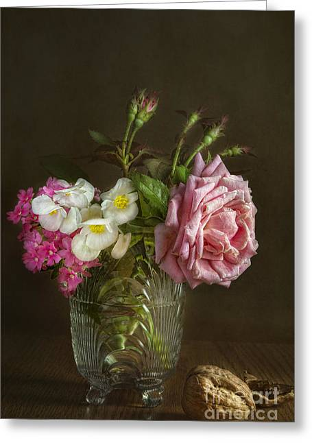Begonia Greeting Cards - Belindas dream Greeting Card by Elena Nosyreva