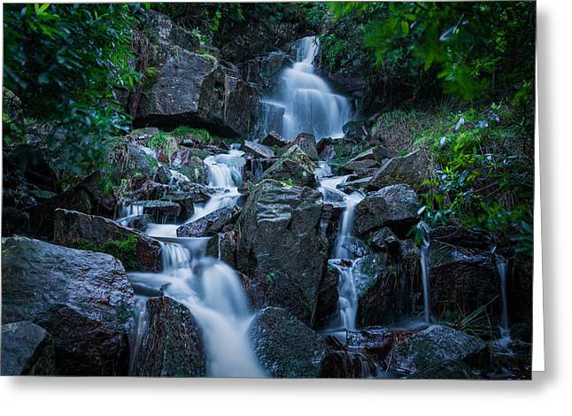 Forest Greeting Cards - Belmont Waterfall. Greeting Card by Daniel Kay
