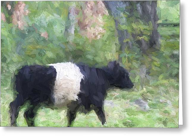 Oreo Cookie Greeting Cards - Belted Galloway Cow Painterly Effect Greeting Card by Carol Leigh