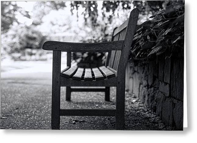 Bench Greeting Card by Alex Land