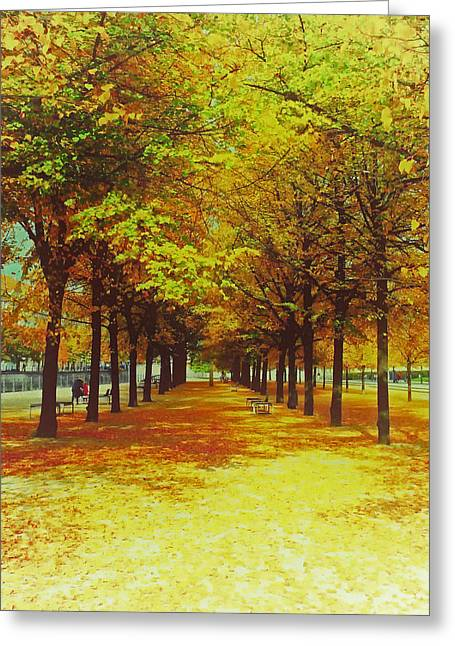 Berlin's Autumn Blaze Greeting Card by Mountain Dreams
