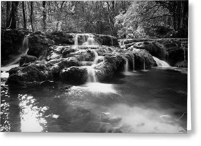 Clear Flowing Stream Greeting Cards - Best Spot in the Forest Greeting Card by Mountain Dreams
