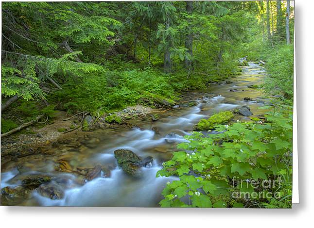 Idaho Scenery Greeting Cards - Big Creek Greeting Card by Idaho Scenic Images Linda Lantzy