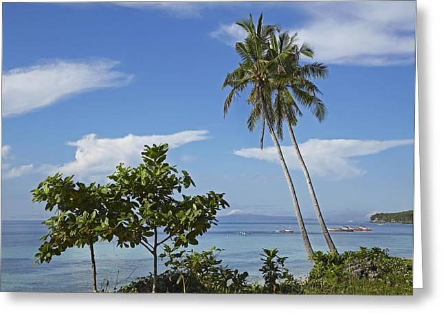 Tim Fitzharris Greeting Cards - Bikini Beach in Philippines Greeting Card by Tim Fitzharris