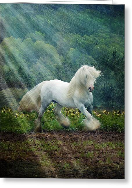 Horses Running Greeting Cards - Billy Rays Greeting Card by Fran J Scott