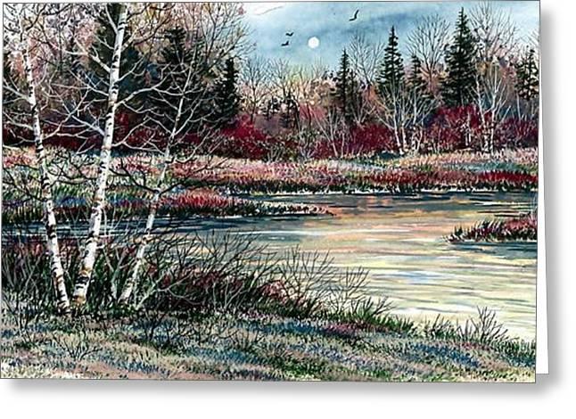 Birch Lake Greeting Card by Steven Schultz