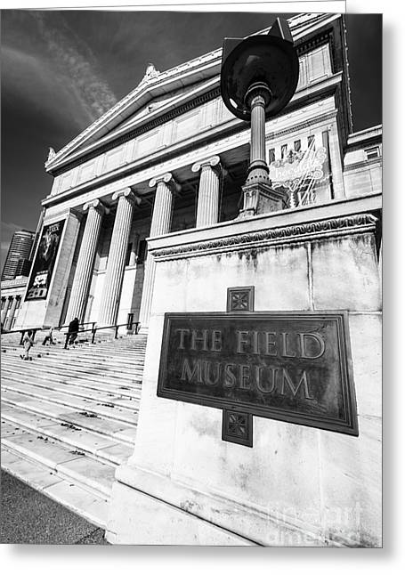 Black And White Photos Greeting Cards - Black and White Chicago Field Museum Greeting Card by Paul Velgos