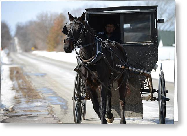 Horse And Buggy Greeting Cards - Black Beauty Greeting Card by Linda Mishler