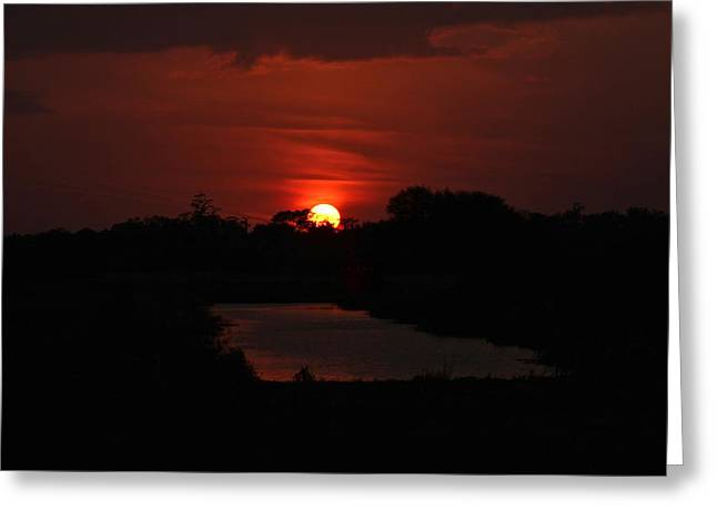 Reflecting Water Greeting Cards - Blood Sky Greeting Card by Denise Mazzocco