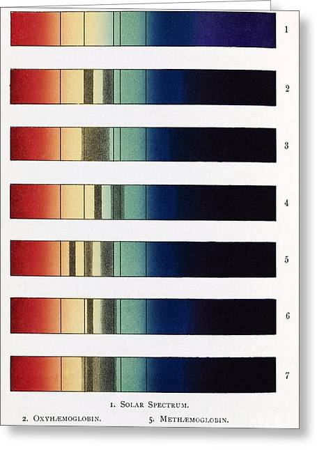 Spectroscopic Greeting Cards - Blood Spectra, 19th Century Artwork Greeting Card by Middle Temple Library