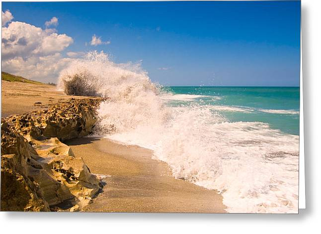 Martin County Greeting Cards - Blowing Rocks Preserve Greeting Card by Rich Leighton