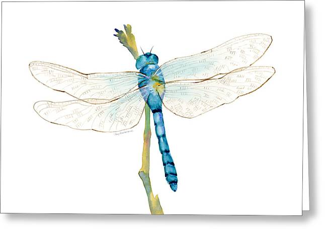 Blue Dragonfly Greeting Card by Amy Kirkpatrick