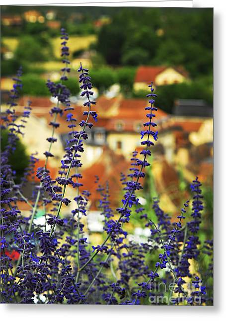 Rooftop Photographs Greeting Cards - Blue flowers and rooftops in Sarlat Greeting Card by Elena Elisseeva
