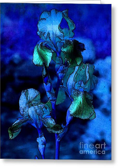 Iris Digital Art Greeting Cards - Blue Irises Greeting Card by Carol Groenen