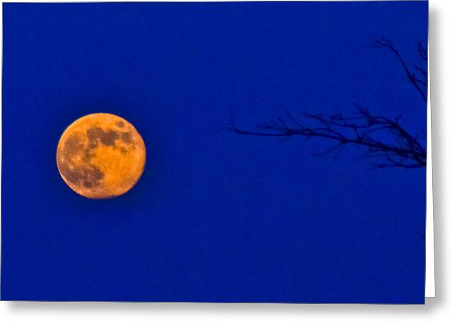 Outerspace Greeting Cards - BlueMoon Greeting Card by Teresa Dixon