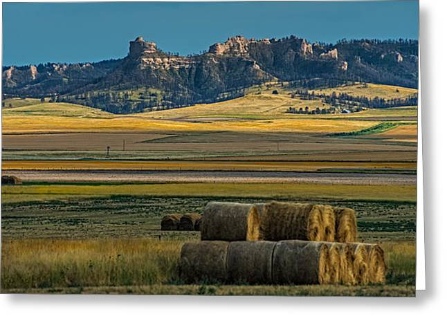 Hay Bales Greeting Cards - Bluff country Greeting Card by Paul Freidlund