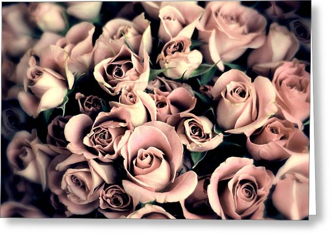 Muted Greeting Cards - Blush Rose Greeting Card by Jessica Jenney