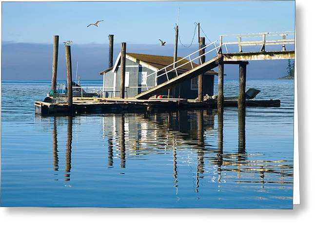 Randy Greeting Cards - Boathouse on Vancouver Island Greeting Card by Randall Nyhof