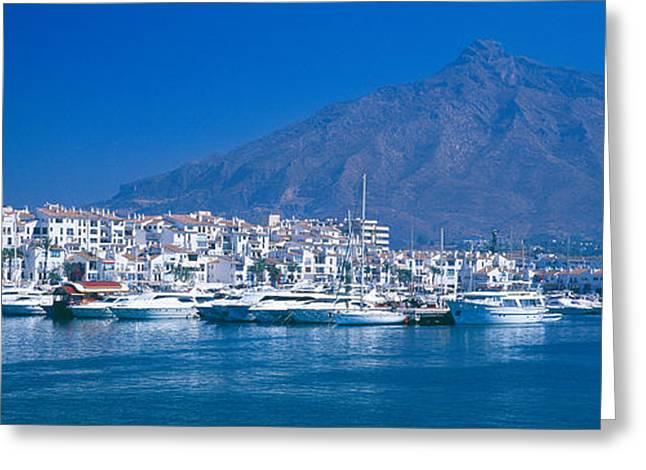 Malaga Greeting Cards - Boats At A Harbor, Puerto Banus Greeting Card by Panoramic Images
