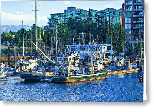 Randy Greeting Cards - Boats in Victoria Harbor on Vancouver Island Greeting Card by Randall Nyhof