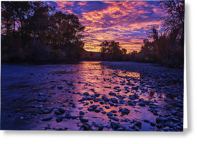 Reflections Of Trees In River Photographs Greeting Cards - Boise River Sunrise Greeting Card by Vishwanath Bhat