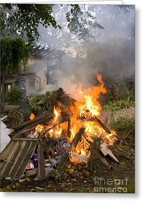 Co2 Greeting Cards - Bonfire In Domestic Garden Greeting Card by Mark Williamson