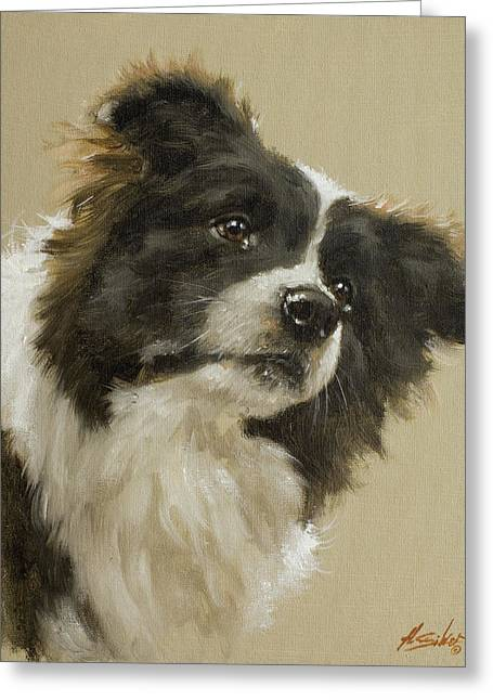 Collie Greeting Cards - Border Collie portrait VI Greeting Card by John Silver