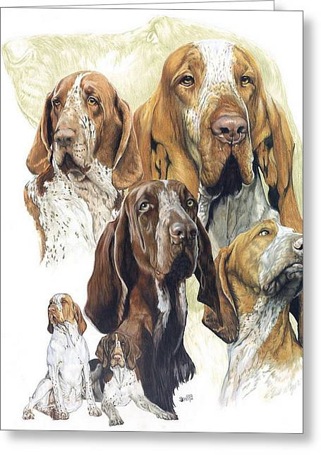 Canines Mixed Media Greeting Cards - Bracco Italiano w/Ghost Greeting Card by Barbara Keith