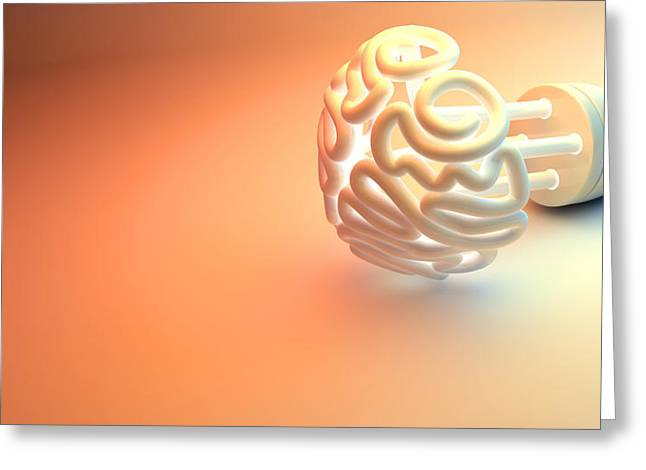 Brain Power Greeting Cards - Brain Flourescent Light Bulb Greeting Card by Allan Swart
