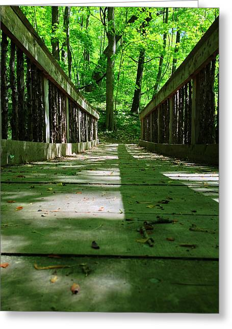 Andrew Martin Greeting Cards - Bridge in the woods Greeting Card by Andrew Martin