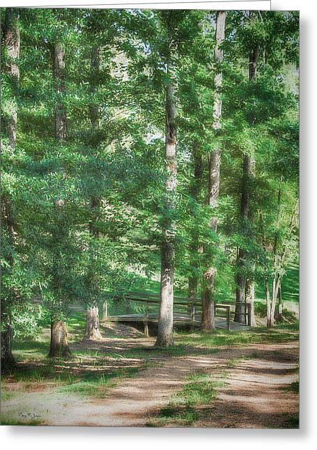 Barry Styles Greeting Cards - Woodland - Landscape - Bridging the Gap Greeting Card by Barry Jones