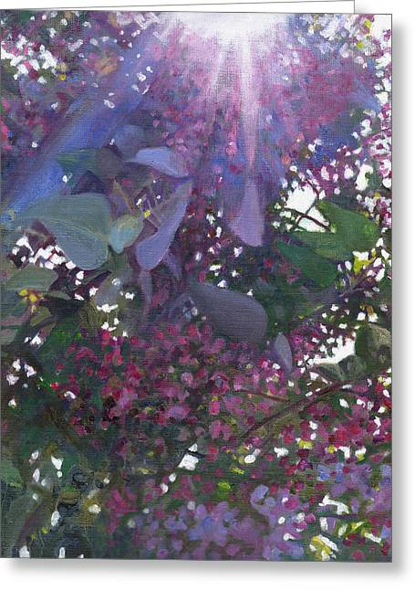 Radiance Greeting Cards - Brilliance Greeting Card by Helen White