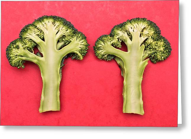 Roughage Greeting Cards - Broccoli Greeting Card by Tom Gowanlock
