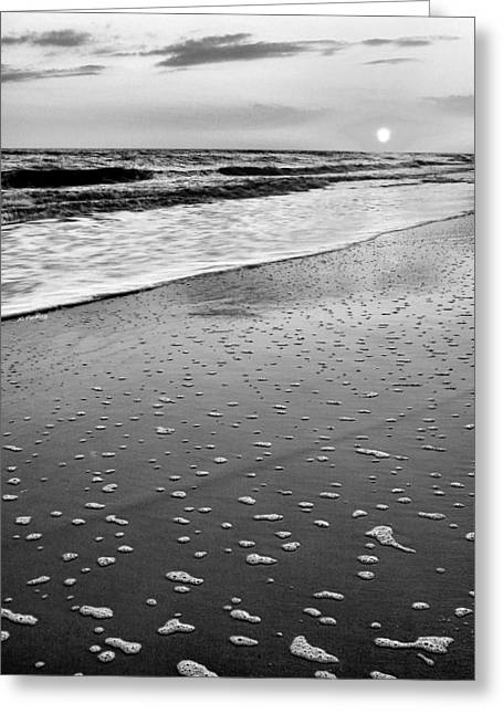 Wilmington North Carolina Greeting Cards - Bubbles Greeting Card by JC Findley