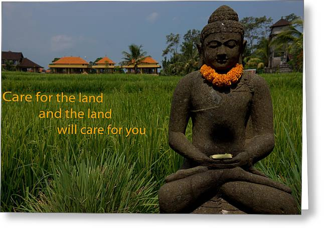 Religiious Greeting Cards - Buddha in the Rice Field Greeting Card by Paul Donohoe