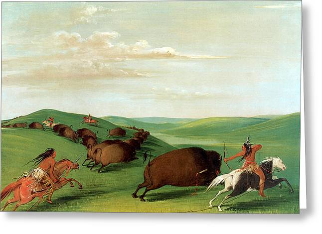 Indian Warriors Photographs Greeting Cards - Buffalo Chase with Bows and Lances Greeting Card by George Catlin