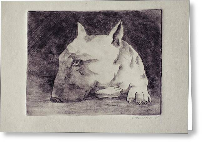 Bull Terrier Greeting Card by Julia Soludanova