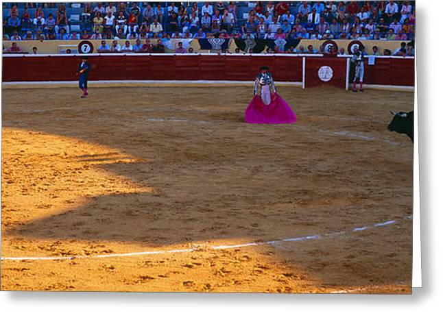 Welfare Greeting Cards - Bullfighter Ready For Bullfight Greeting Card by Panoramic Images