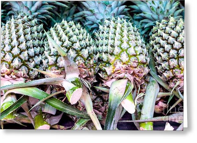 Ananas Greeting Cards - Bunch of fresh pineapples at farmers market Greeting Card by Frank Bach