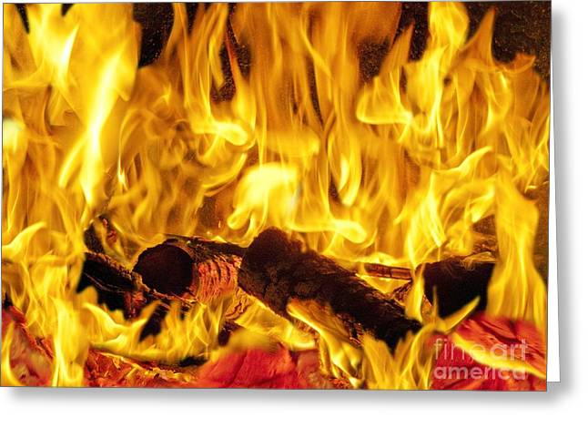 Fire Wood Greeting Cards - Burning Wood Greeting Card by Paul Biddle