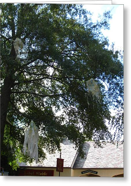 Ghost Greeting Cards - Busch Gardens - 12128 Greeting Card by DC Photographer