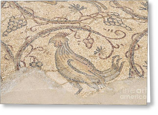Byzantine Greeting Cards - Byzantine mosaic depicting animals and hunting scenes. Greeting Card by Shay Levy