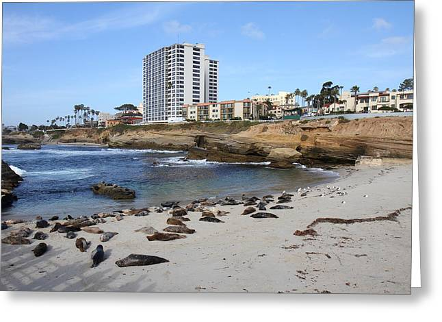 Waving Greeting Cards - CA Beach - 121221 Greeting Card by DC Photographer