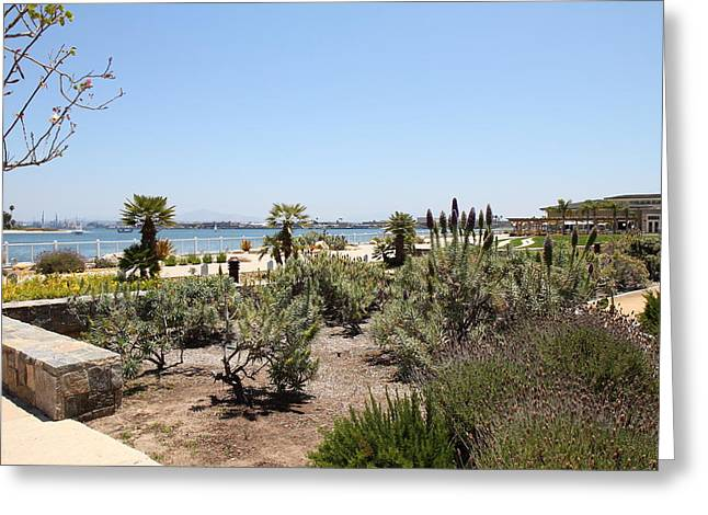 Ca Beach - 121230 Greeting Card by DC Photographer