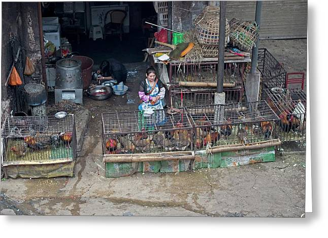 Caged Chickens In A Food Market Greeting Card by Tony Camacho
