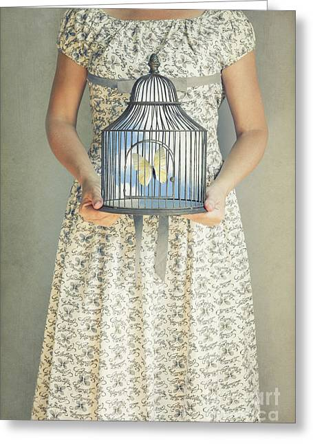 Dress Patterns Greeting Cards - Caged Greeting Card by Margie Hurwich