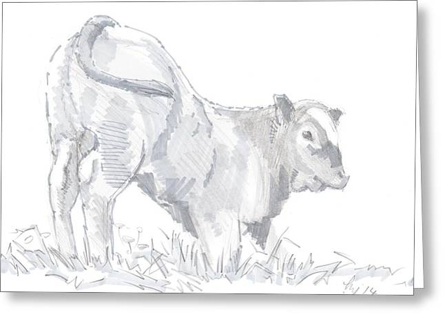 Knelt Mixed Media Greeting Cards - Calf Drawing Greeting Card by Mike Jory