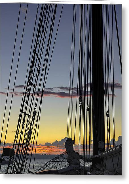 Sailboats In Water Greeting Cards - Californian at sunset Greeting Card by Marianne Campolongo